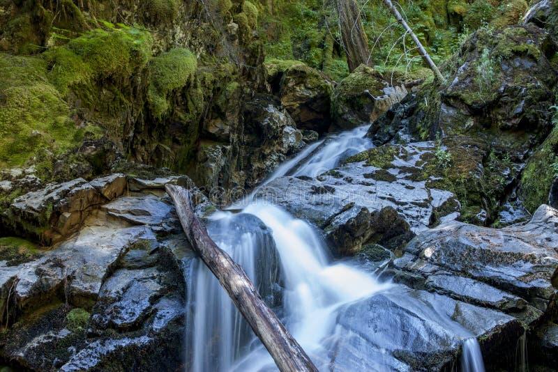 Cascadas del norte de Idaho foto de archivo libre de regalías