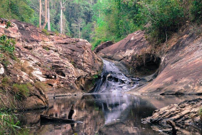 Cascadas en bosques verdes fotos de archivo libres de regalías