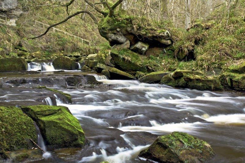 Cascadas en el río Esk cerca de la cascada Goathland del canalón de Mallyan fotos de archivo libres de regalías