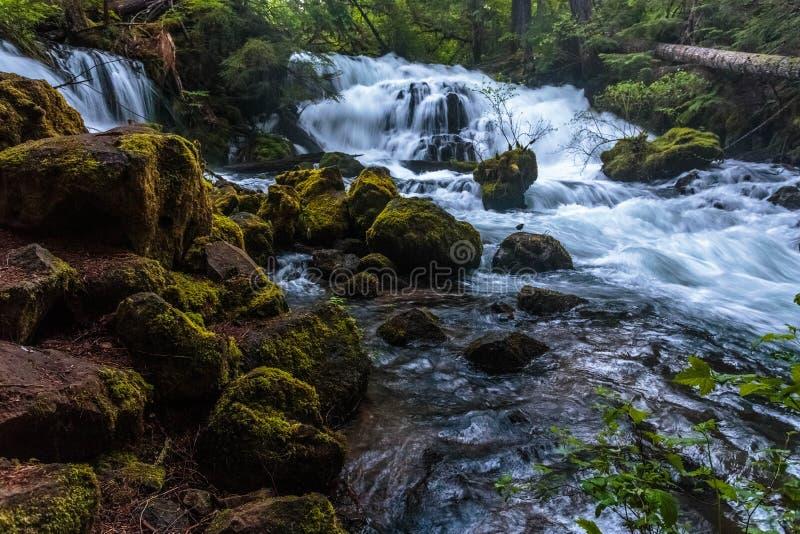 Cascadas en rocas cubiertas de musgo con textura foto de archivo libre de regalías