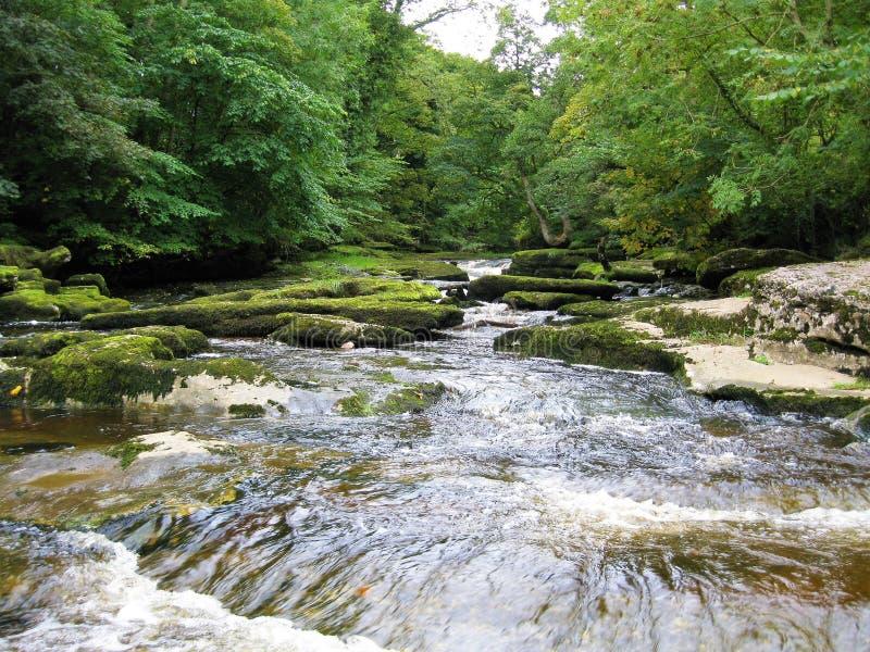 Cascadas en una corriente cerca de Kirkby Stephen, Cumbria, Inglaterra imagenes de archivo