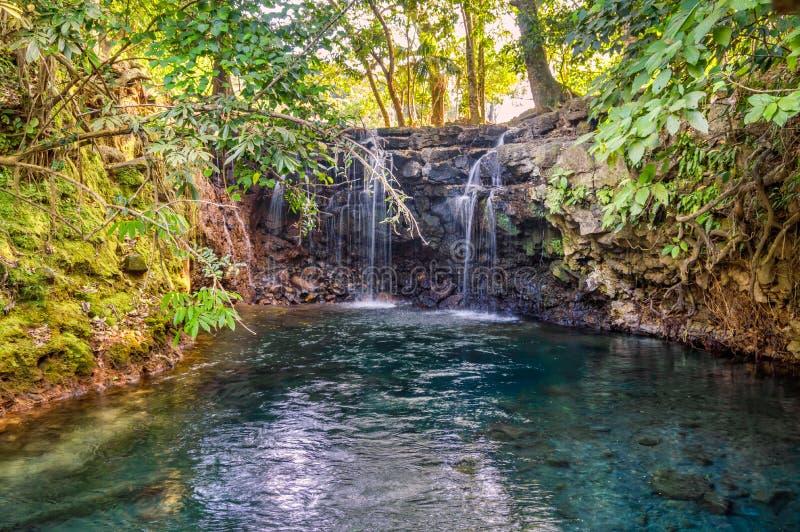 Cascadas Gemelas, Veracruz, Messico immagini stock