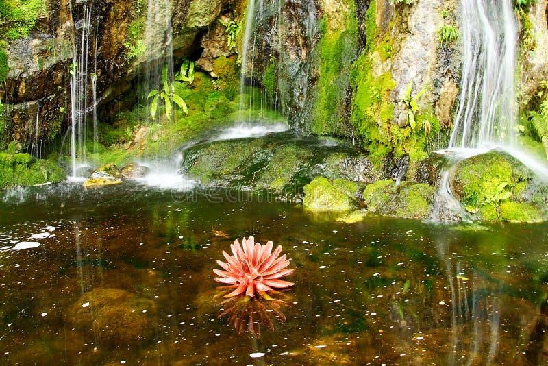 Cascadas hermosas en jardines de la lisonja foto de archivo libre de regalías