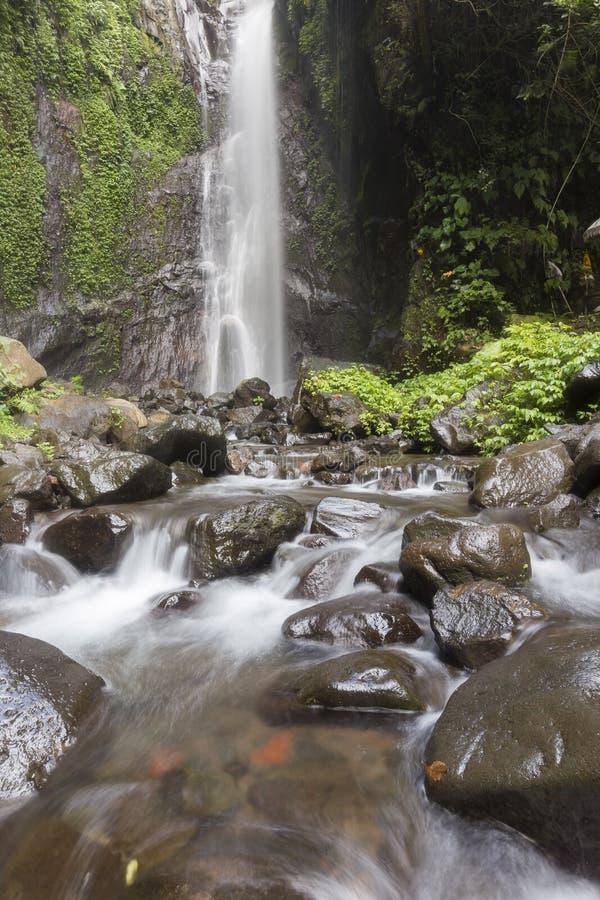 Cascadas hermosas ocultadas en Bali del norte imagen de archivo libre de regalías