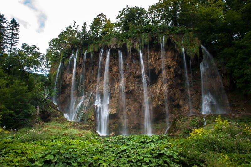 Cascadas y bosques hermosos, lagos Plitvice, parque nacional, bosque, Croacia fotografía de archivo
