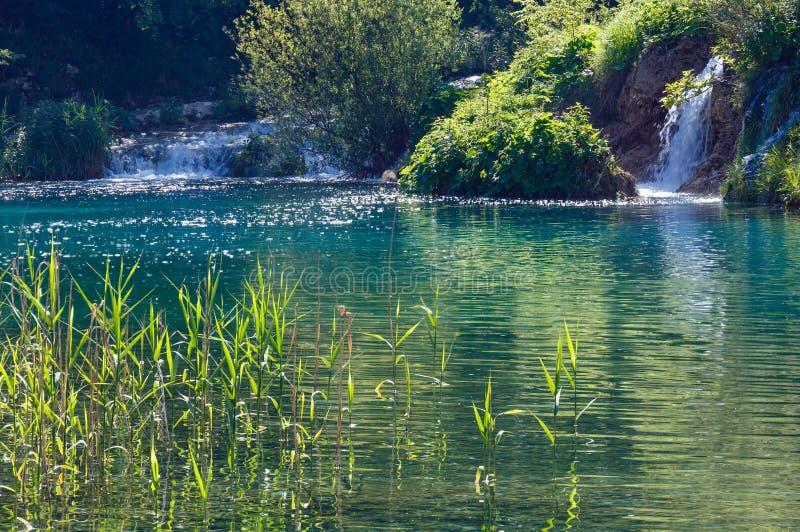 Cascadas del verano y lago límpido verde imagen de archivo libre de regalías