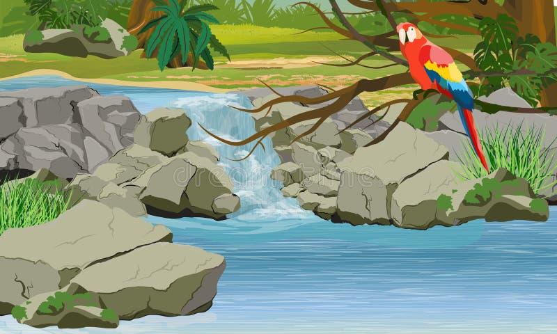 Cascade à écriture ligne par ligne dans la jungle Perroquet lumineux d'ara sur les branches d'un arbre tropical illustration stock