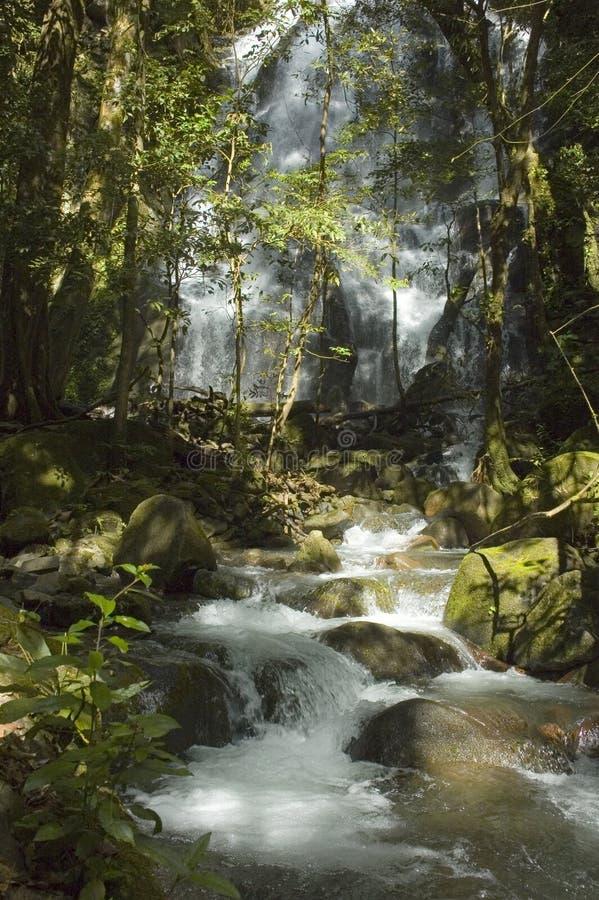 Cascade à écriture ligne par ligne chez Rincon de la Vieja. photos libres de droits