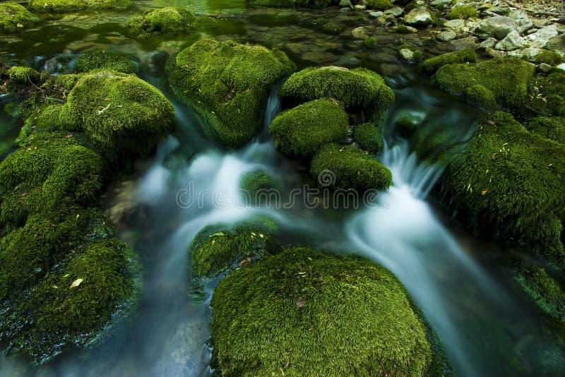 Cascade à écriture ligne par ligne d'été dans le fleuve minuscule image libre de droits