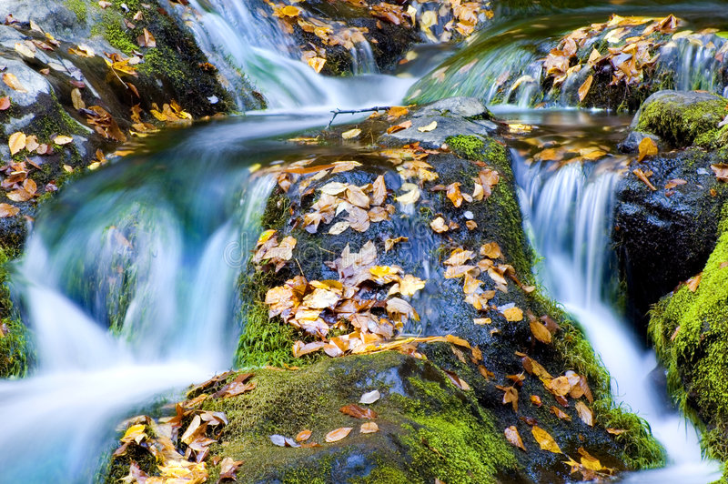 cascade à écriture ligne par ligne d'automne images libres de droits