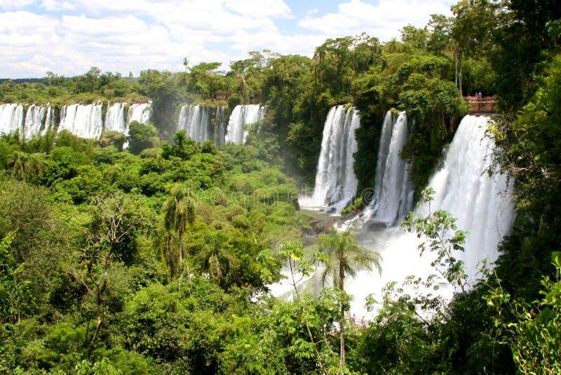 Cascade à écriture Ligne Par Ligne D Iguacu Images libres de droits