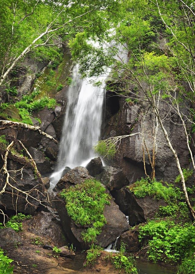 Cascade à écriture ligne par ligne dans la forêt, horizontal sauvage photo libre de droits