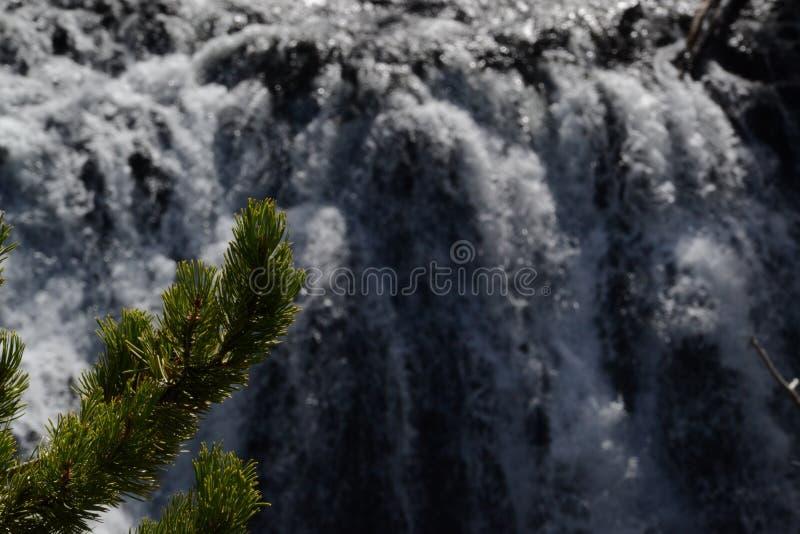 Cascade à écriture ligne par ligne dans Yellowstone image stock