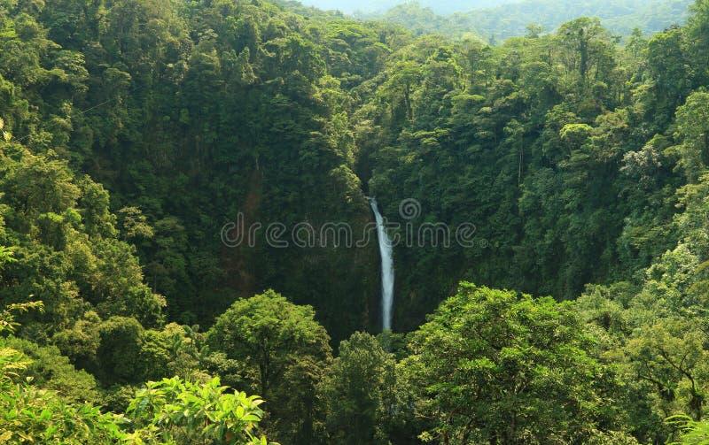 Cascade à écriture ligne par ligne de Fortuna de La, Costa Rica photos libres de droits
