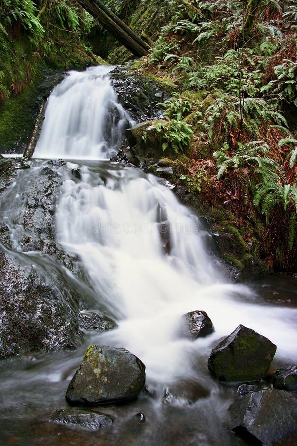 Cascade à écriture ligne par ligne de gorge de Colombie photos stock