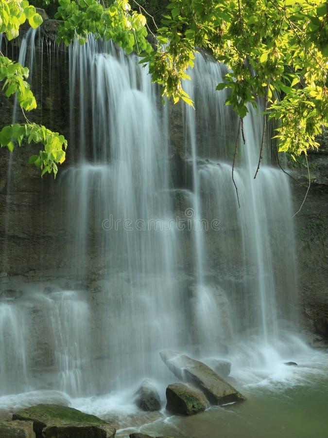 Cascade à écriture ligne par ligne de gorge de roche - Ontario, Canada photo libre de droits