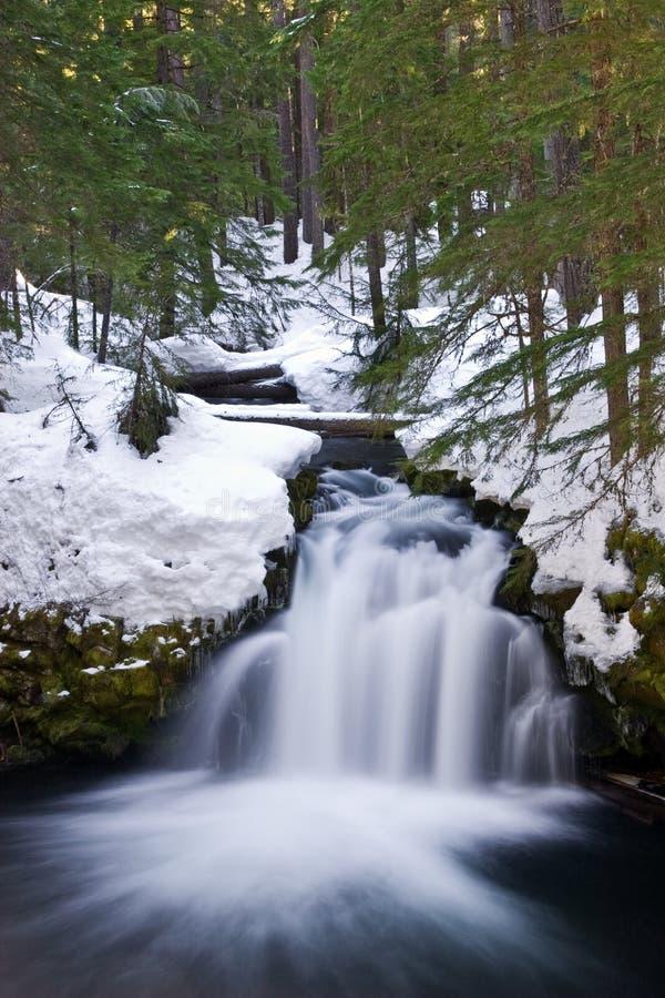 Cascade à écriture ligne par ligne de l'hiver image libre de droits
