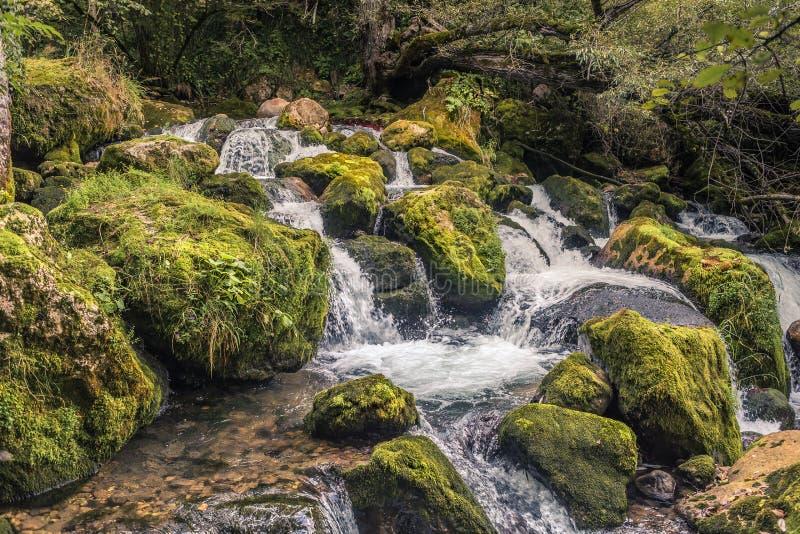 Cascade à écriture ligne par ligne de montagne La Géorgie, Caucase photos stock