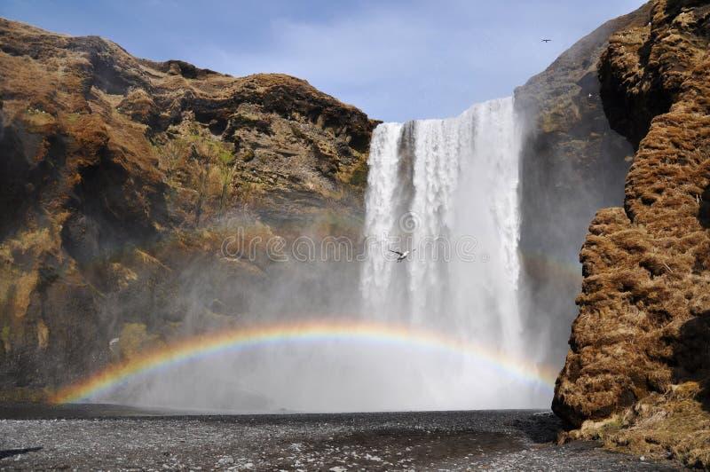 Cascade à écriture ligne par ligne de Skogafoss, Islande photos stock