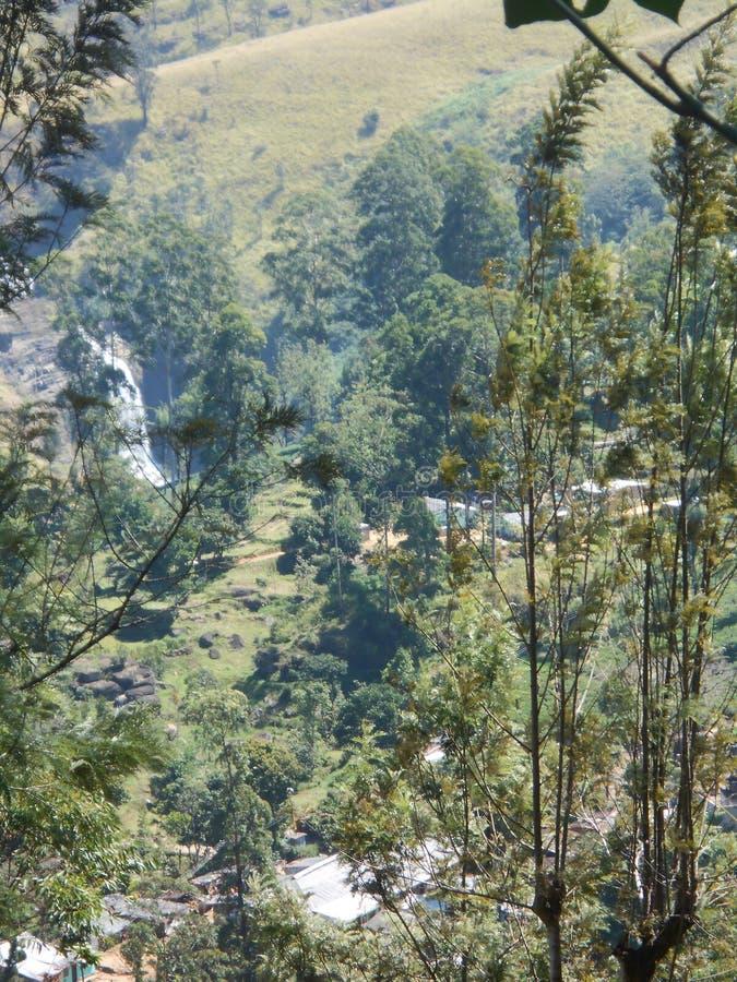 Cascade à écriture ligne par ligne du Devon au Sri Lanka photographie stock