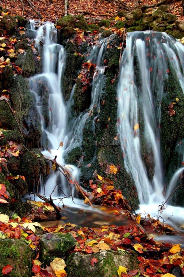 Cascade à écriture ligne par ligne en automne photo stock