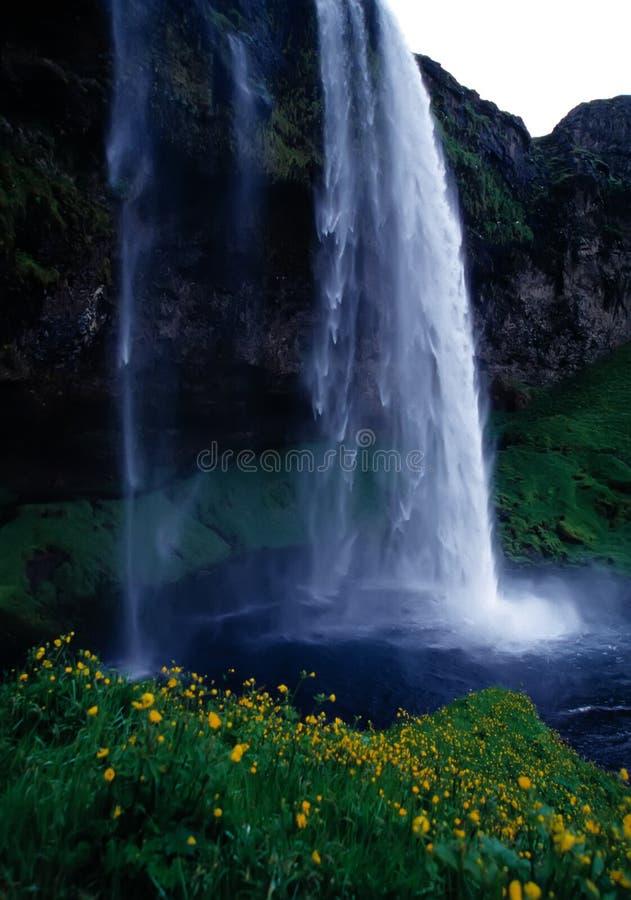 Cascade à écriture ligne par ligne Islande photographie stock libre de droits
