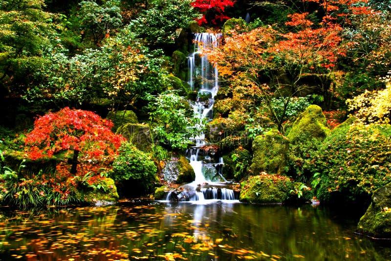 Cascade à écriture ligne par ligne, jardin japonais photographie stock libre de droits
