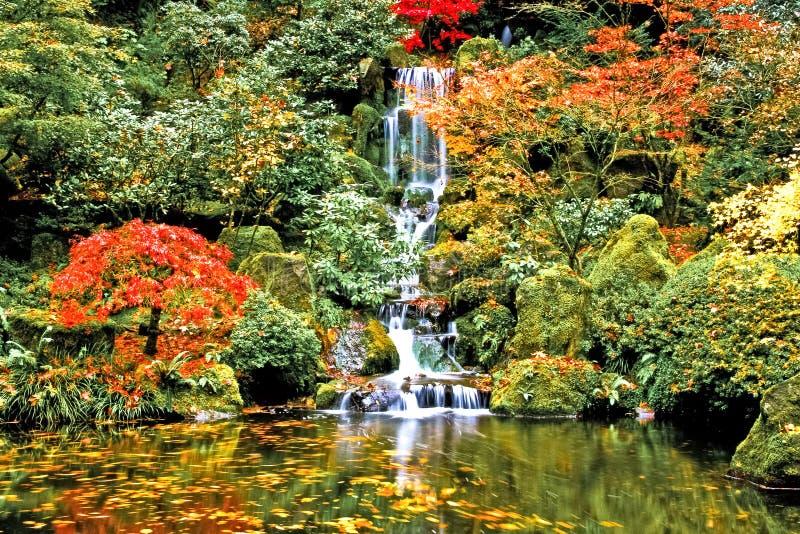 Cascade à écriture ligne par ligne, jardin japonais photo stock