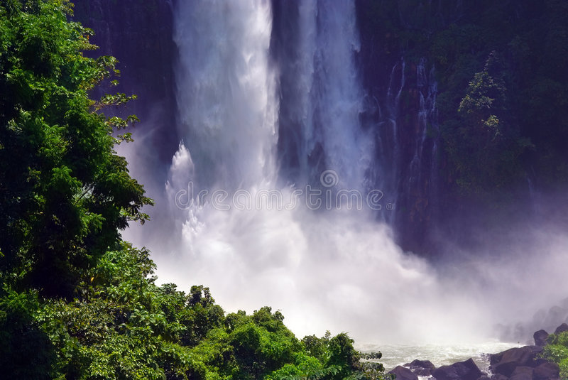 Cascade à écriture ligne par ligne jumelle tropicale de jungle photos libres de droits