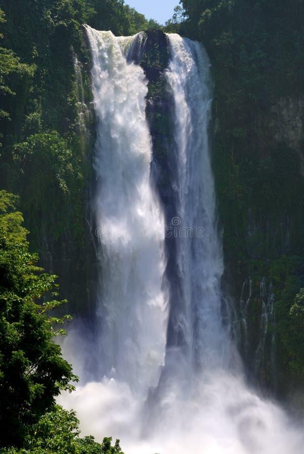 Cascade à écriture ligne par ligne jumelle tropicale de jungle photo stock