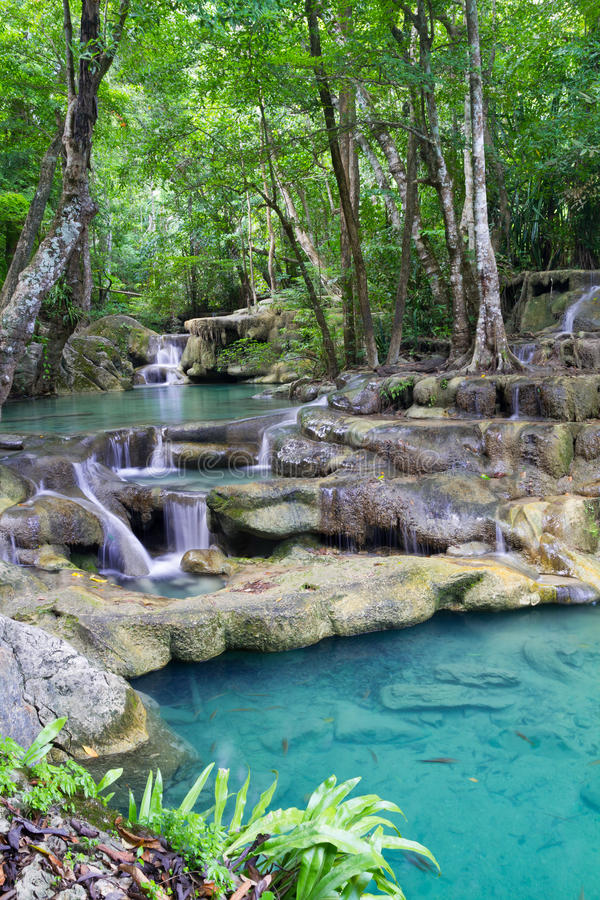 Cascade à écriture ligne par ligne profonde de forêt (cascade à écriture ligne par ligne d'Erawan) en Thaïlande photos stock