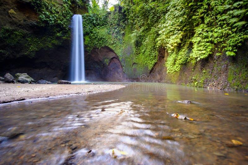 Cascade à écriture ligne par ligne tropicale photographie stock