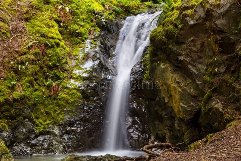 Cascade à Vancouver photo libre de droits
