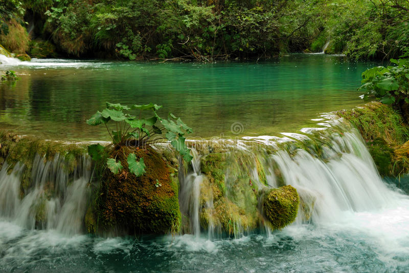 Download Cascade stock image. Image of clean, wild, cascade, motion - 11710543