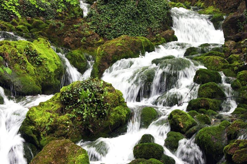 Download Cascade stock photo. Image of broom, nature, cascade - 14299640