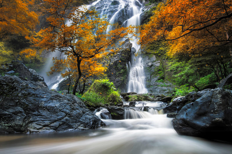 Cascade images stock