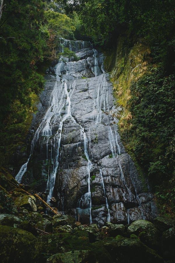 Cascade au Japon photos libres de droits