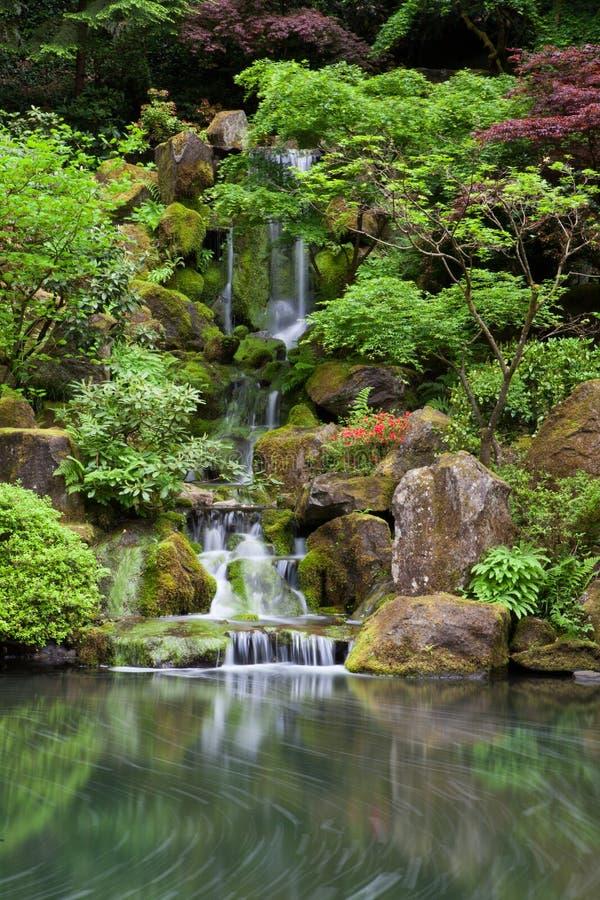 Cascade de cascade dans le jardin japonais à Portland images libres de droits