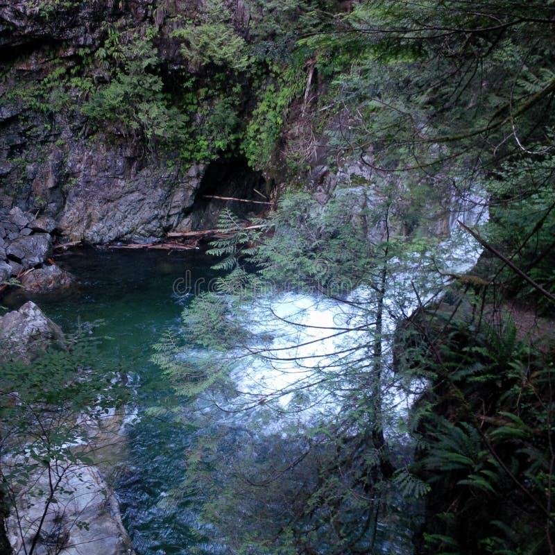 Cascade au parc régional de rivière de Capilano photo libre de droits