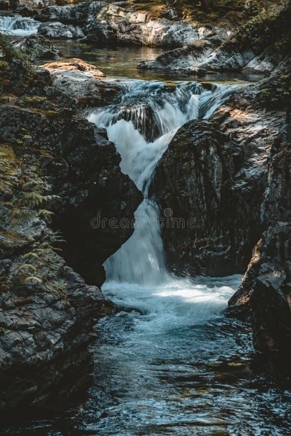 Cascade avec la rivière en île de Vancouver près de Victoria, Canada images libres de droits