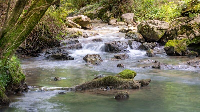 Cascade in Bergstroom royalty-vrije stock foto's