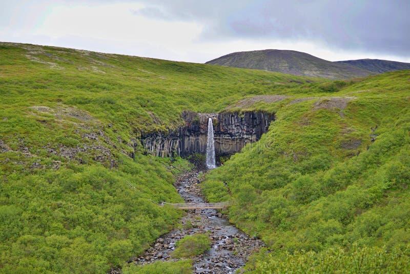 Cascade célèbre de Svartifoss d'islandais dans le basalte et le x28 ; whinstone& x29 ; canyon placé dans le parc national de Vatn images libres de droits