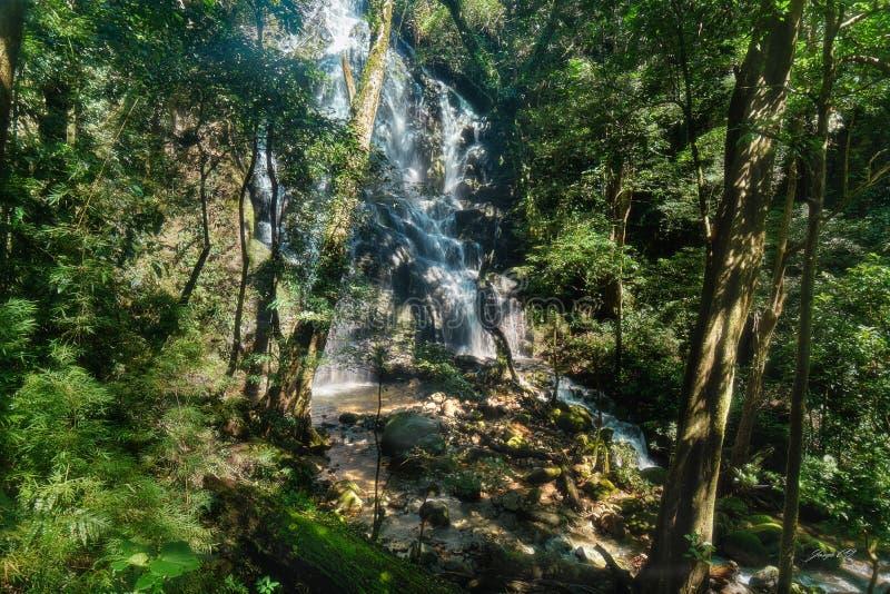 Cascade cachée au parc national de Volcan de la vieja image stock