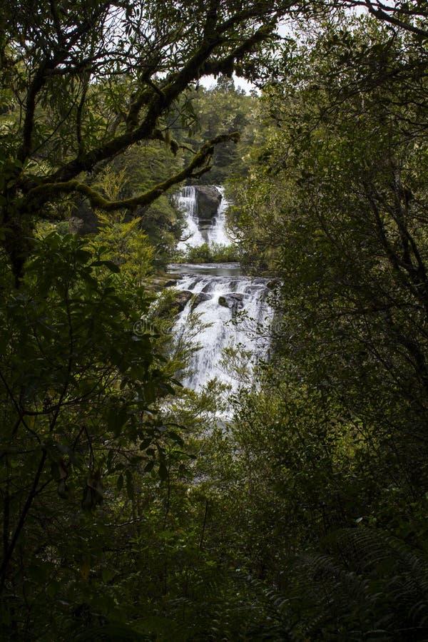 Cascade cachée dans la forêt photo libre de droits
