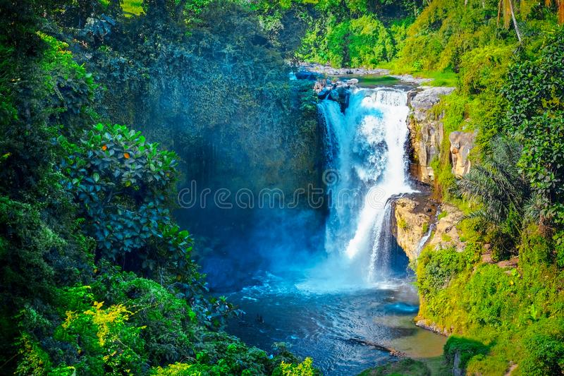 Cascade cachée dans la jungle tropicale Cascade majestueuse dans t images stock