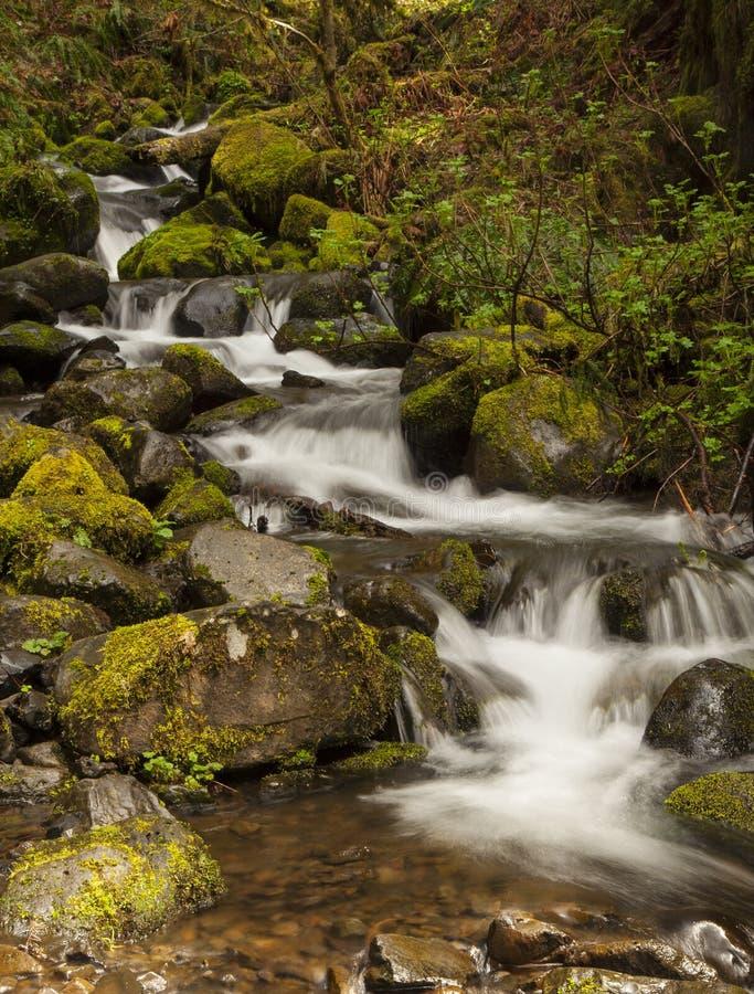 Cascade chez Eagle Creek 3 images stock