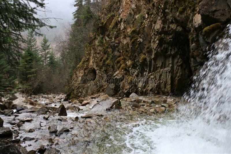 Cascade chez Reid Falls inférieur dans Skagway, Alaska photographie stock libre de droits