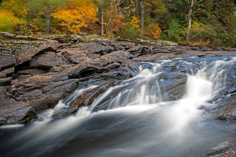 Cascade courte avec le feuillage d'automne à l'arrière-plan photo libre de droits