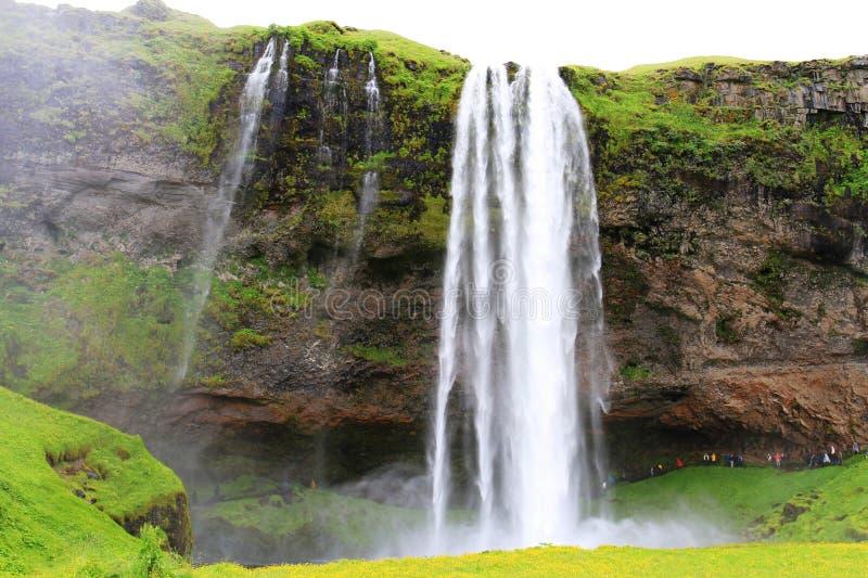 Cascade ? ?criture ligne par ligne de Seljalandsfoss, Islande photographie stock libre de droits