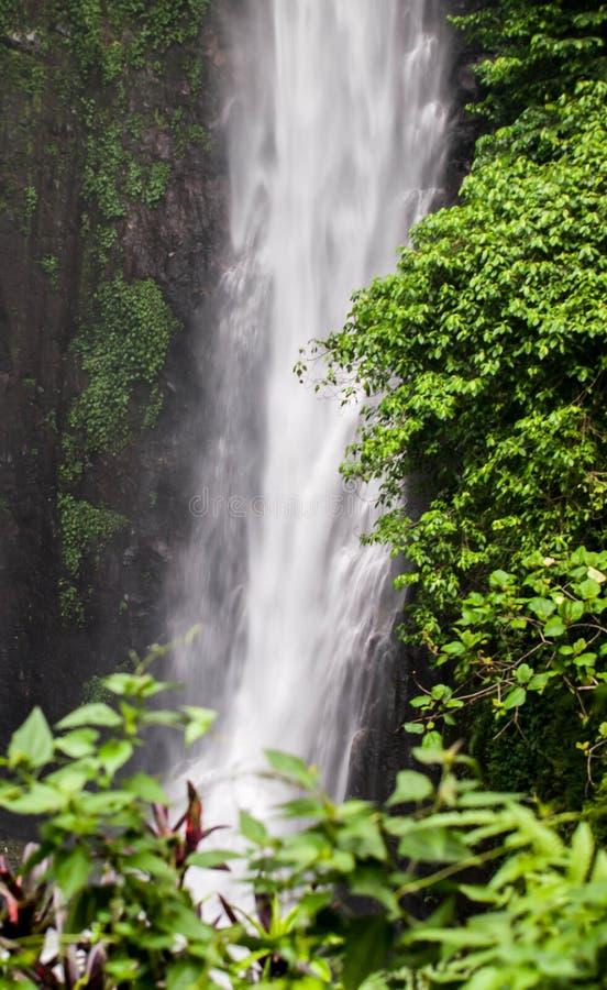 Cascade cubaine Indonésie de rondeau photo stock